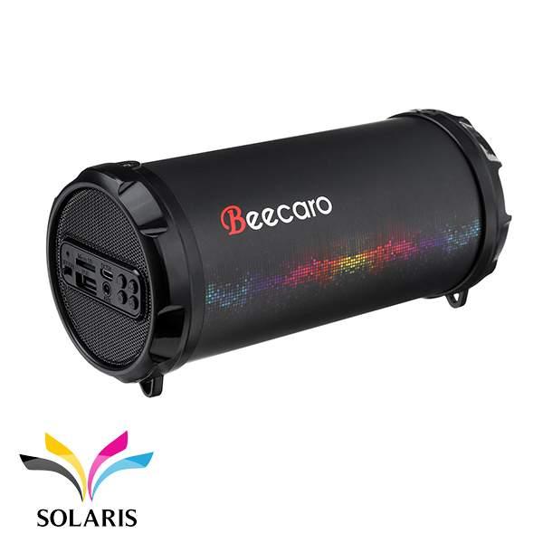 speaker-beecaro-s41b
