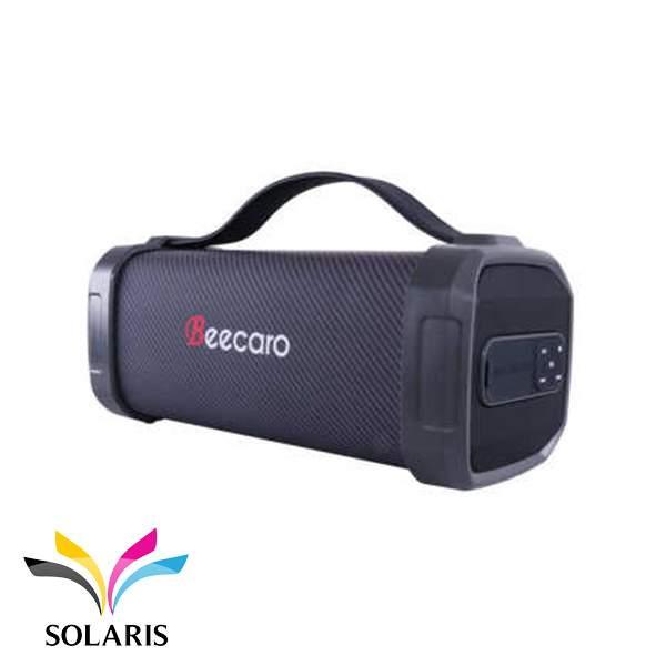 speaker-beecaro-f62d