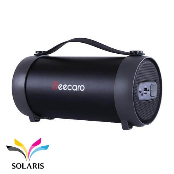 s22e-beecaro-speaker