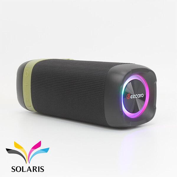 beecaro-gf-402-speaker